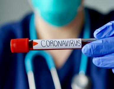 MZ: Są nowe przypadki koronawirusa w Polsce. Zmarli kolejni pacjenci z...
