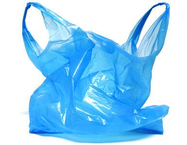 145 tys. zł za użycie plastikowej reklamówki. Surowe prawo weszło w życie