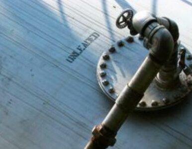"""""""Europa jest głęboko uzależniona od rosyjskich gazociągów"""""""