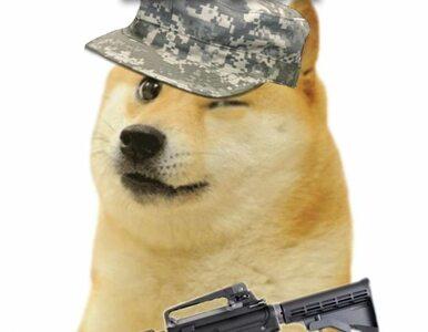 Memy zamiast bomb. Internauci kombinują, jak uniknąć poboru do wojska