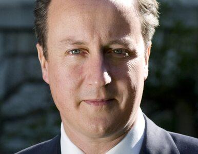 Cameron uderza w imigrantów. Ucierpią Polacy?