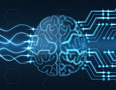 Aktywność internautów mówi więcej niż sondaże. Sztuczna inteligencja...