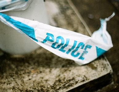 Mapa przestępstw: Sprawdź, gdzie najczęściej łamane jest prawo