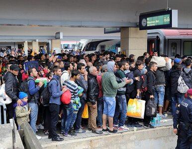 Niemcy: Setki tysięcy miejsc pracy dla uchodźców