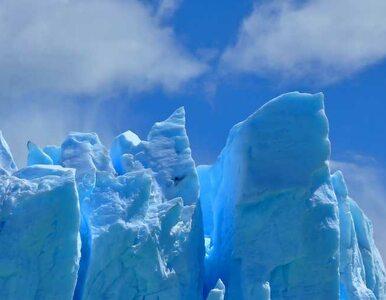 Antarktyda: Cztery statki płyną na ratunek naukowcom