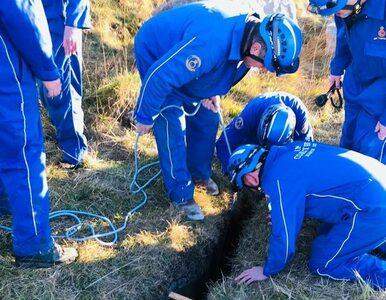 Pies wpadł do trzymetrowej szczeliny. Ratownicy pokazali zdjęcia z akcji...