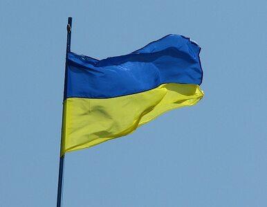 Cimoszewicz: Nie narzucimy się Ukrainie