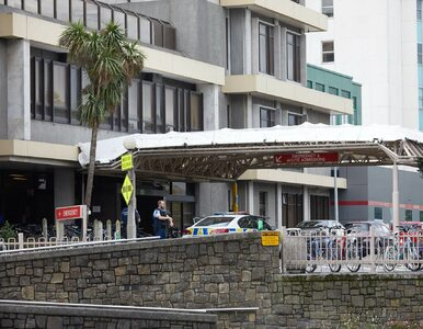Atak na meczety w Christchurch i Linwood. Jednym ze sprawców...