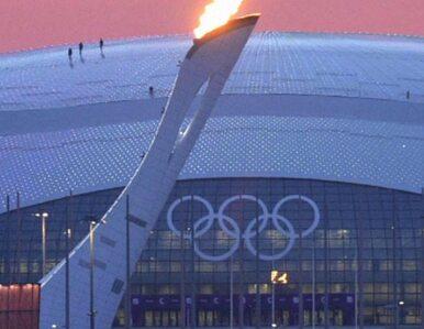 Na tydzień przed igrzyskami w Soczi zapłonął olimpijski znicz. Na próbę