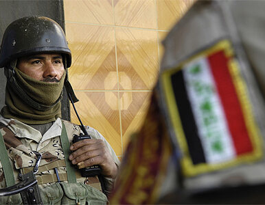 Armia Iraku wspierana przez lokalne milicje zdobyła centrum Tikritu