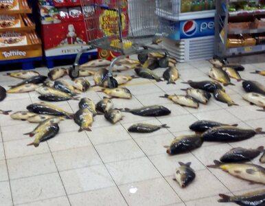 Skandal w tyskim supermarkecie. Kilkadziesiąt żywych karpi na sklepowej...