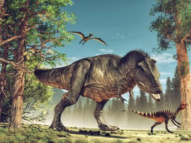 Zaskakujące badania. Po wyginięciu dinozaurów, fantastycznie rozwinął...