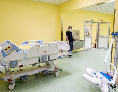 """""""Desperacko potrzebujemy pielęgniarek i lekarzy"""". Dyrektor włoskiego..."""