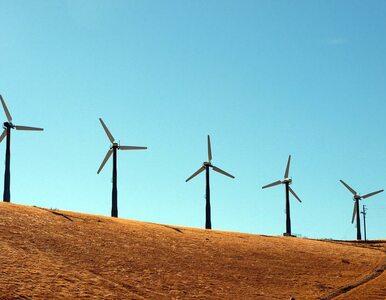 """Niemcy mają """"czystą energię"""". Cierpią Polacy i Czesi"""