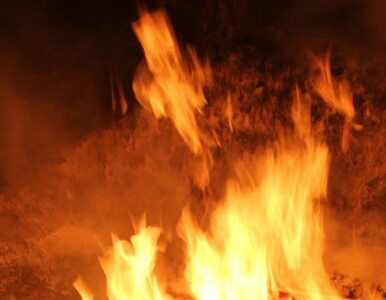 Pożar lotniska w Nairobi. Zamiast gasić ogień okradali lokale?