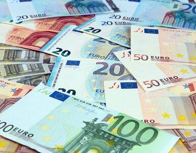 Europejski Bank Centralny podjął ważną decyzję. Powiększono także...
