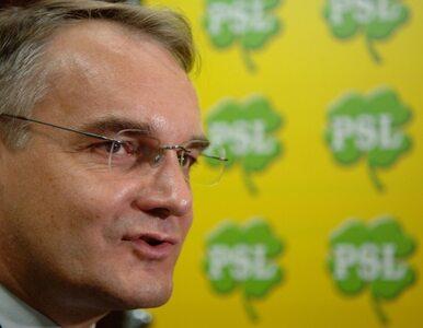 PSL zawiesza władze na Dolnym Śląsku