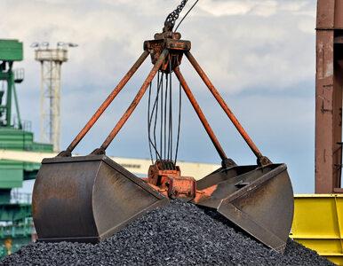Poseł Brejza ujawnia: Od dwóch lat rosyjski węgiel zalewa Polskę