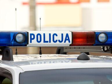 Ciała trzech osób leżały przy drodze w Małopolsce. Wśród ofiar 10-letnie...