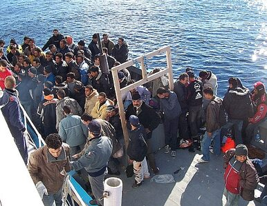 Austria: Już ponad 80 tysięcy wniosków o azyl