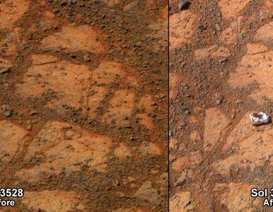 Naukowcy potwierdzili, czym jest tajemniczy przedmiot sfotografowany na...