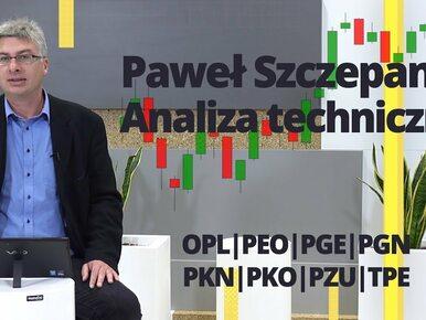 Paweł Szczepanik przedstawia: OPL, PEO, PGE, PGN, PKN, PKO, PZU, TPE |...