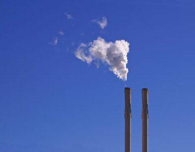 Polskie elektrownie mogą emitować CO2, ale...