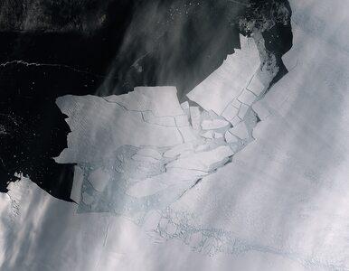 Ocielił się lodowiec na Antarktydzie. Oderwała się od niego góra lodowa...