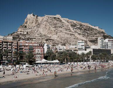 Turyści wrócili z Hiszpanii zakażeni czikungunią. Wszystko przez komary
