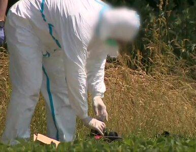 Zabójstwo 10-letniej Kristiny z Mrowin. Prokuratura apeluje o pomoc