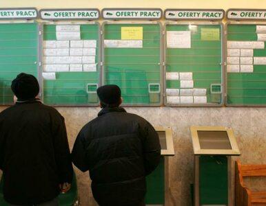 Śląsk zwalcza bezrobocie. Za 175 mln zł