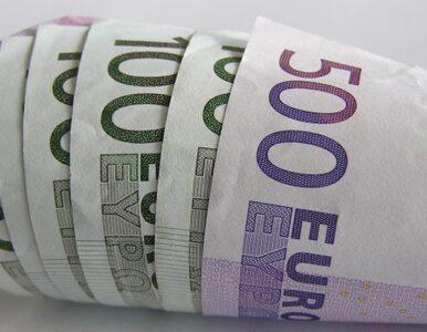 Estonia wkracza do strefy euro
