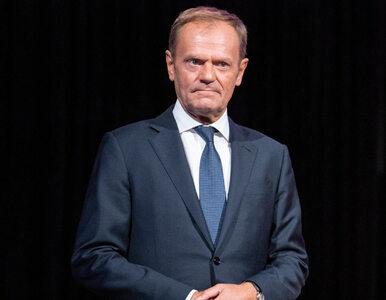 """Donald Tusk wkracza do gry. """"Dał zielone światło na zniszczenie Schetyny"""""""