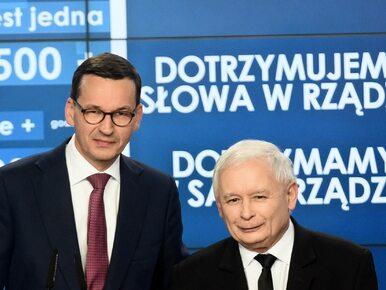 Ekspert: Wybory samorządowe będą miały twarz Mateusza Morawieckiego
