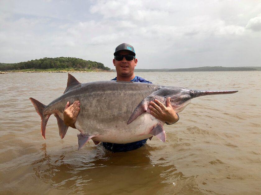 James Lukehart i jego ryba