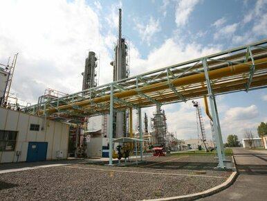 Naftogaz Ukrainy wnioskuje o dołączenie do wniosku PGNiG ws. gazociągu Opal