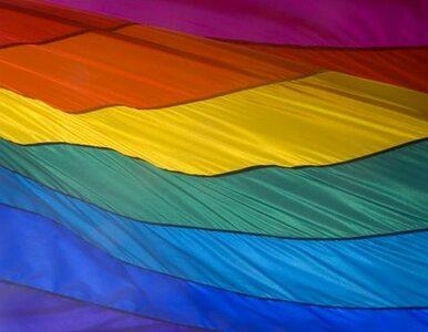 Poseł PiS: 40 proc. homoseksualistów może grozić dzieciom