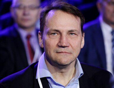 """Sikorski gotów zastąpić Kidawę-Błońską. Chce """"bardzo szybkich"""" prawyborów"""