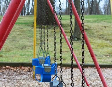 Skażone śląskie place zabaw. Ołów, kadm i cynk w niebezpiecznych stężeniach