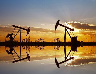 Ropa naftowa znowu w górę. Baryłka już prawie za 40 dolarów