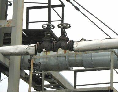 Kulczyk szuka gazu na Ukrainie