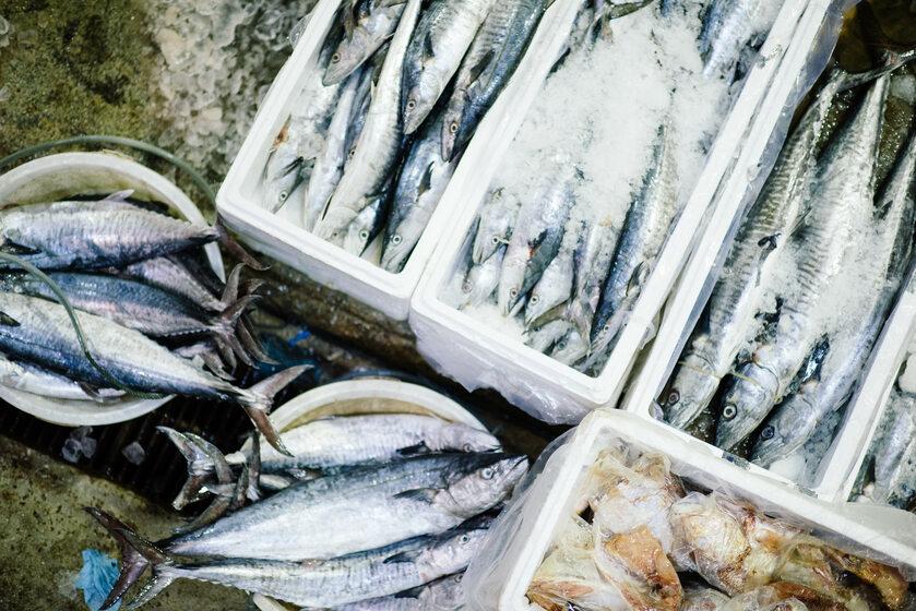Ryby, owoce morza