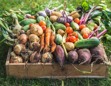Te warzywa spożywaj jednocześnie. Uzyskasz maksimum smaku i wartości...
