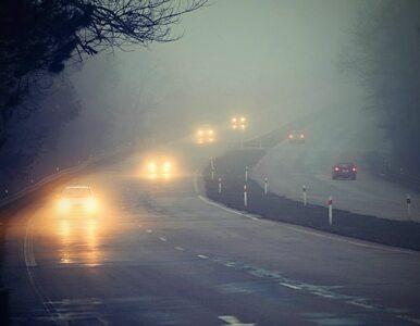W piątek rano mgliście, później pogodnie. Temperatura od 3 do 9℃