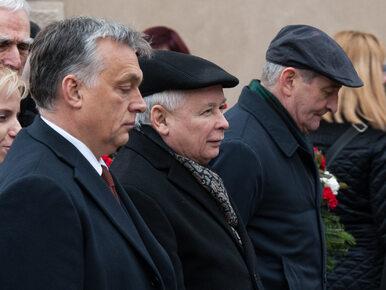 """Tak wygląda nowa okładka """"POLITICO Europe"""". Kaczyński, Orban i hasło..."""