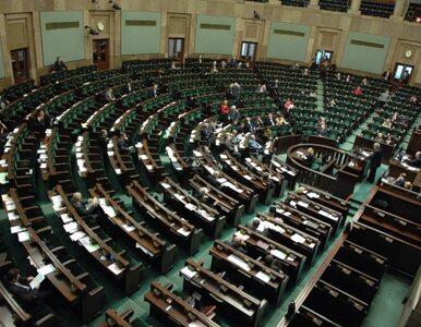 PiS chce wiedzieć co robią krewni polityków. Kłopotek: do którego...