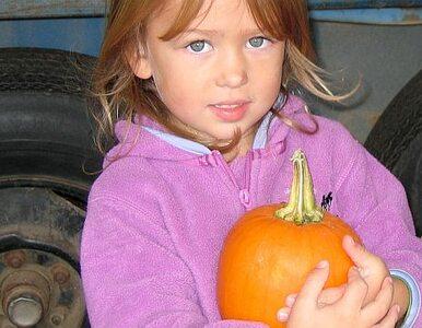 3-latka błąkała się po Opolu