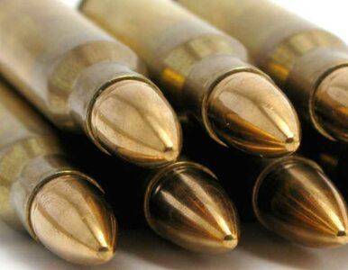 Kilkanaście kul w ciele instruktora. 25-latek przyznał się do winy