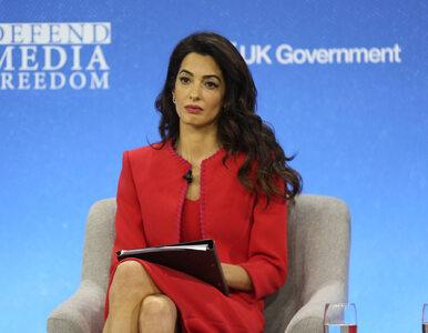 Amal Clooney zrugała Wielką Brytanię i odchodzi ze stanowiska. Stanowczy...