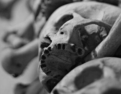 Czegoś takiego jeszcze nikt nie widział - kobietę pochowano wśród setek...